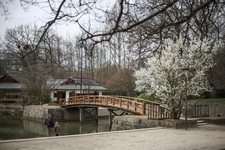japanse tuin in Hasselt op 20 munten van B&BNummer5
